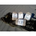 Seaweed Soap Four Pack + 1 FREE